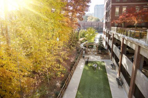 Dog Park at Camden Paces Apartments in Atlanta, GA