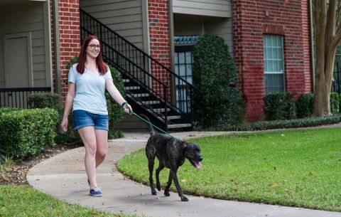 Manicured Walking Trails and Pet-Friendly Home at Camden Park Apartments in Houston, TX