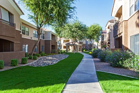 Green Walking Trails at Camden Pecos Ranch Apartments in Chandler, AZ