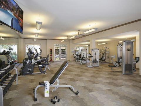 24 Hour Fitness Center with Cardio and Free Weights at Camden Plaza Apartments in Houston, TX