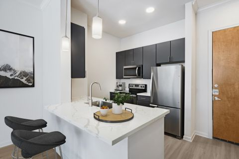 Modern style kitchen at Camden Plaza Apartments in Houston, TX