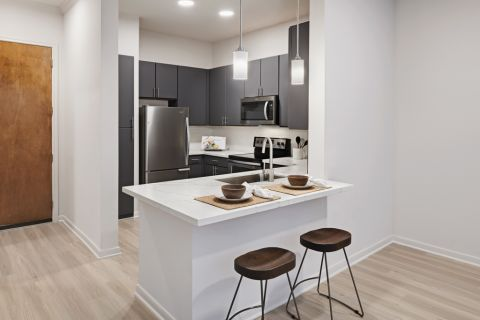 Spacious Kitchens with white quartz countertops at Camden Plaza Apartments in Houston, TX