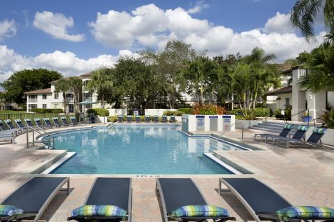 Pool at Camden Portofino Apartments in Pembroke Pines, FL