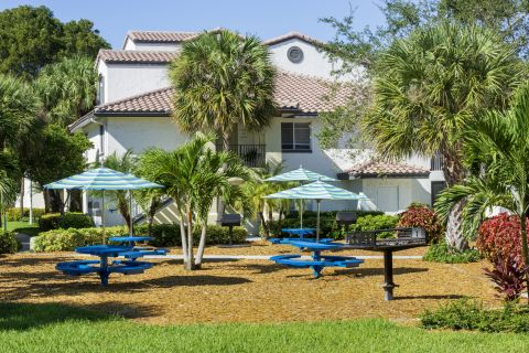Picnic Area and Grills at Camden Portofino Apartments in Pembroke Pines, FL