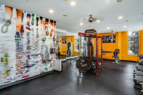 Fitness Center with Cardio Equipment at Camden Potomac Yard Apartments in Arlington, VA