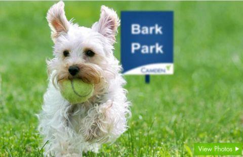 Dog Park at Camden Preserve Apartments in Tampa, FL