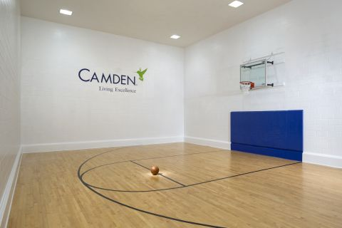 Basketball Court at Camden Preserve Apartments in Tampa, FL