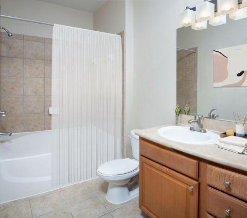 Bathroom at Camden Royal Palms Apartments in Brandon, FL