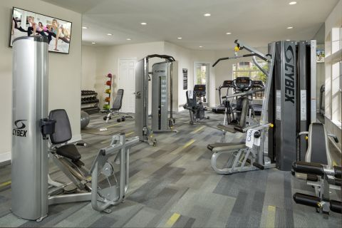 Fitness Center at Camden Royal Palms Apartments in Brandon, FL
