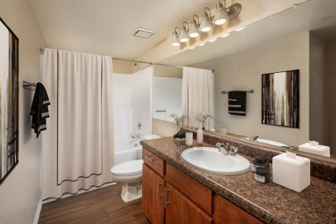 Bathroom at Camden San Paloma Apartments in Scottsdale, AZ
