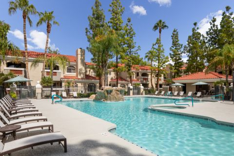 Resort-Style Swimming Pool with Lounge Chairs at Camden San Paloma Apartments in Scottsdale, AZ