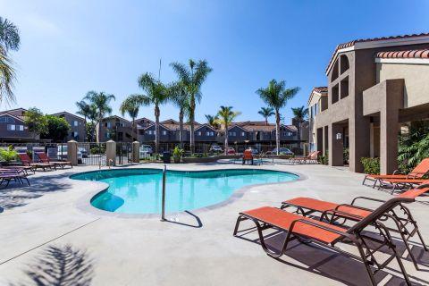 Pool at Camden Sea Palms Apartments in Costa Mesa, CA