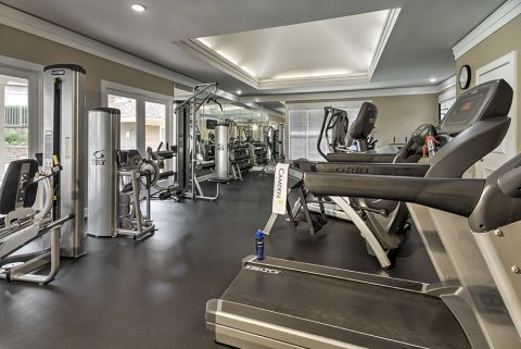 Fitness Center with Cardio Equipment and Free Weights at Camden Sedgebrook Apartments in Huntersville, NC