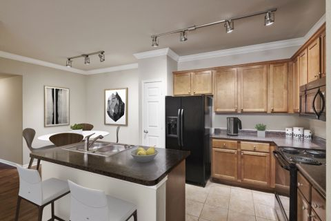 Open concept kitchen at Camden Shadow Brook apartments in Austin, TX