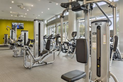 Fitness Center with Weight Machines at Camden Shady Grove Apartments in Rockville, MD