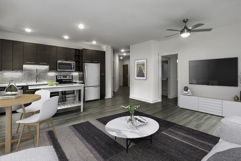 Living Room with Hardwood-Style Flooring and Kitchen with Stainless Steel Appliances at Camden Shady Grove Apartments in Rockville, MD