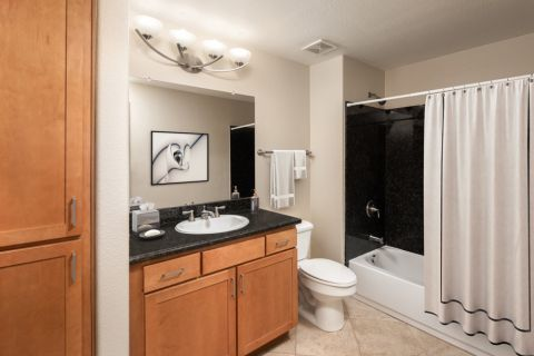 Bathroom at Camden Sotelo Apartments in Tempe, Arizona