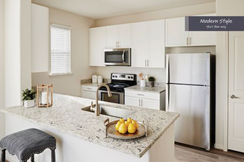 Modern Style Kitchen with Stainless Steel Appliances at Camden Spring Creek Apartments in Spring and The Woodlands, TX