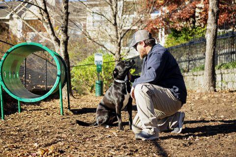 Dog Park at Camden St Clair Apartments in Atlanta, GA