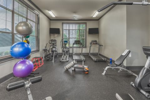 Fitness Center at Camden Stockbridge Apartments in Stockbridge, GA