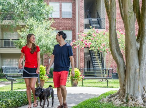Pet-Friendly Living at Camden Stonebridge Apartments in Houston, TX