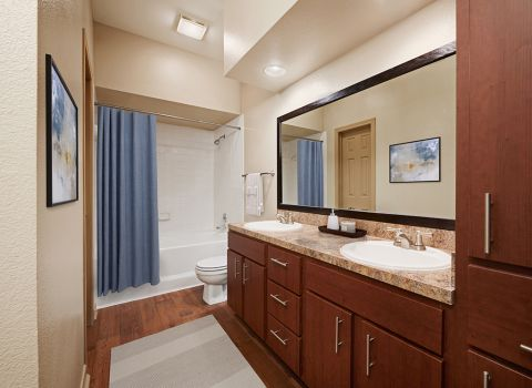Bathroom at Camden Stonebridge Apartments in Houston, TX