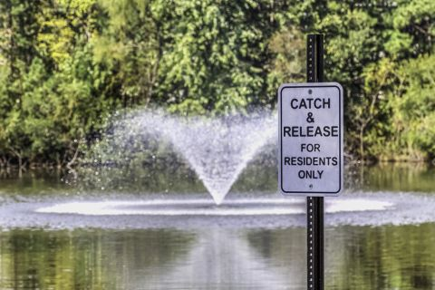 Catch and Release Pond at Camden Stonecrest Apartments in Charlotte, NC