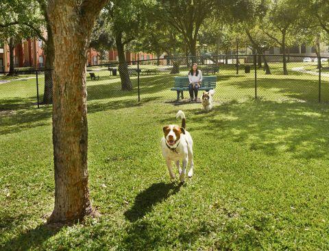 Private Dog Park at Camden Sugar Grove Apartments in Stafford, TX