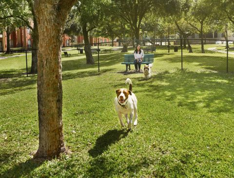 Private Dog Park at Camden Sugar Grove Apartments in Stafford, TX