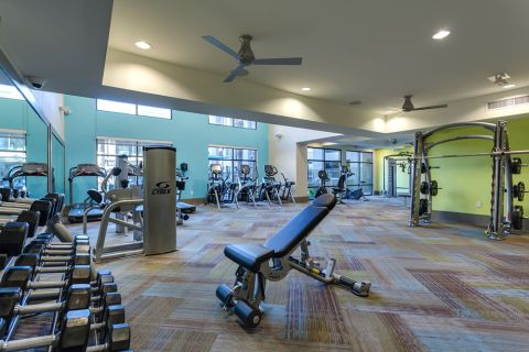 Fitness center with free weights at Camden Tempe Apartments in Tempe, AZ