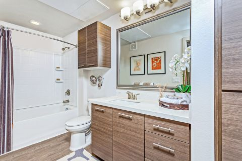 Single Vanity Bathroom at Camden Tempe Apartments in Tempe, AZ