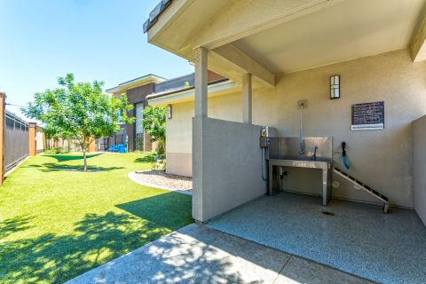 Pet washing station at Camden Tempe Apartments in Tempe, AZ