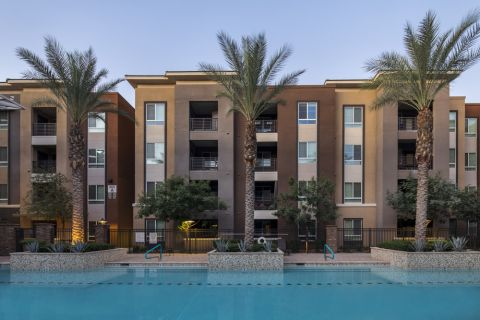 Pool surrounded by beautiful palm trees at Camden Tempe Apartments in Tempe, AZ