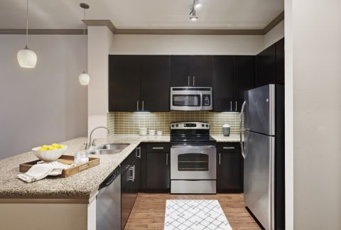 Kitchen with Spacious Countertops at Camden Travis Street Apartments in Houston, TX