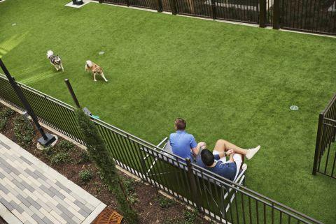 Dog Park at Camden Victory Park Apartments in Dallas, TX