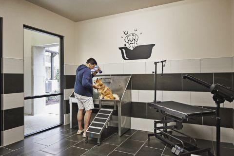Dog Wash Station at Camden Victory Park Apartments in Dallas, TX