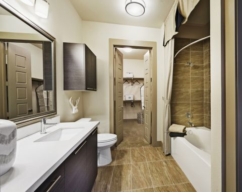 Bathroom with Garden Tub and Walk-in Closet at Camden Victory Park Apartments in Dallas, TX
