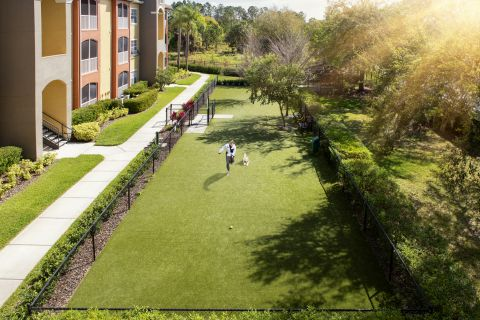 Dog Park at Camden Visconti Apartments in Brandon, FL