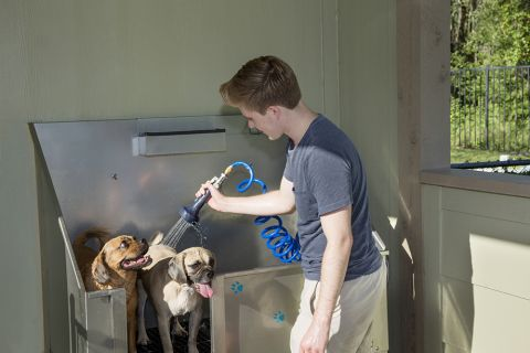 Dog Wash at Camden Westchase Park Apartments in Tampa, FL