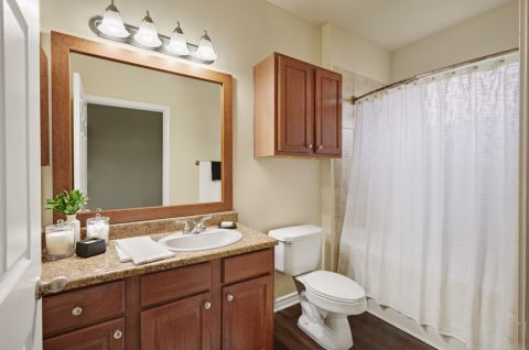 Bathroom with Wood Look Flooring at Camden Woodson Park Apartments in Houston, TX