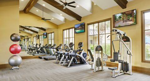 Fitness Center with Cardio Equipment at Camden Woodson Park Apartments in Houston, TX