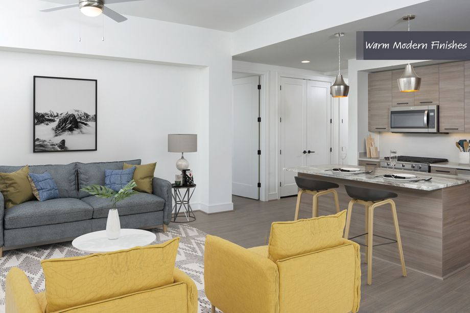 Living Room in Warm Modern Finish Scheme at Camden Downtown Houston Apartments in Houston, Texas