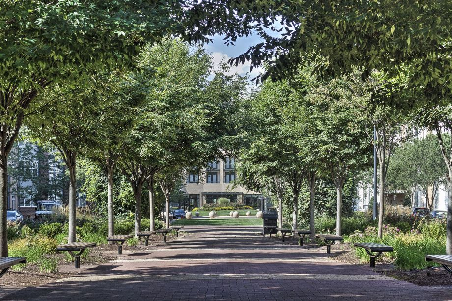 Park at Camden Dulles Station Apartments in Herndon, VA