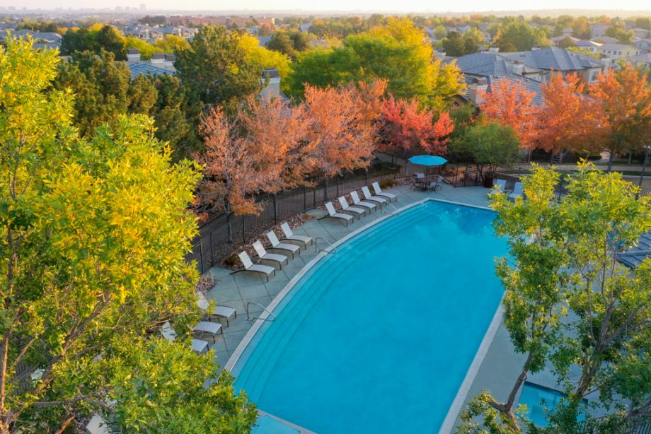 Swimming Pool at Camden Highlands Ridge Apartments in Highlands Ranch, CO