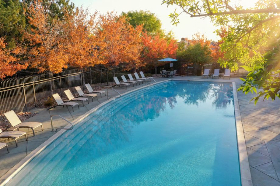 Pool at Camden Highlands Ridge Apartments in Highlands Ranch, CO