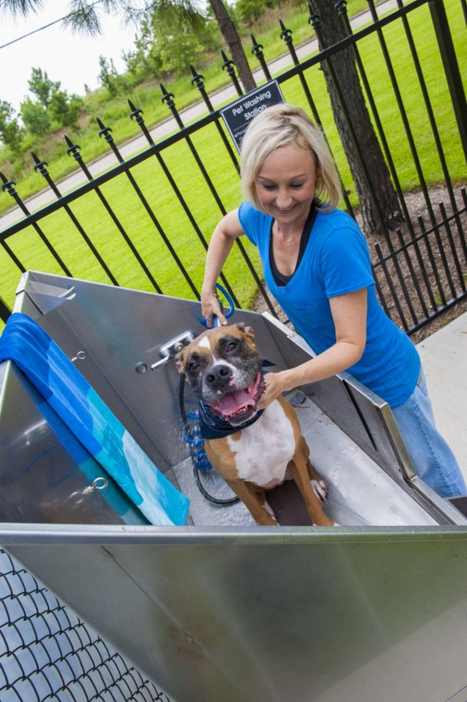 Dog Wash Station at Camden Montague Apartments in Tampa, FL