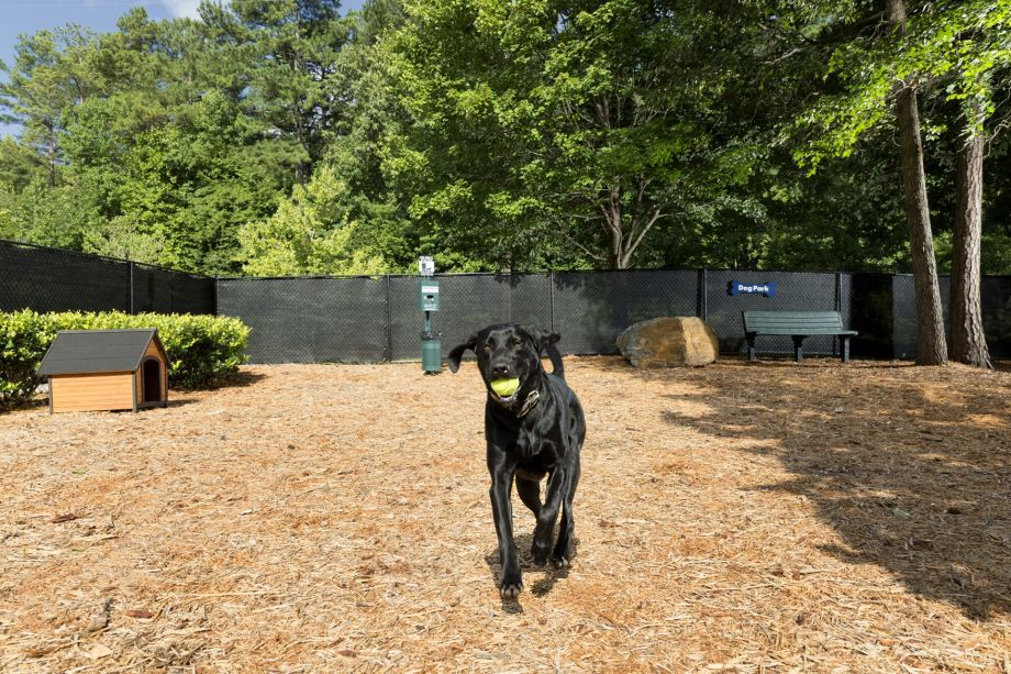 Dog Park at Camden Peachtree City Apartments in Peachtree City, GA