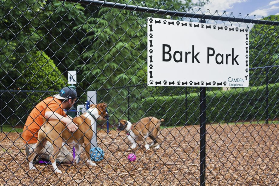 Dog Park at Camden Sedgebrook Apartments in Huntersville, NC