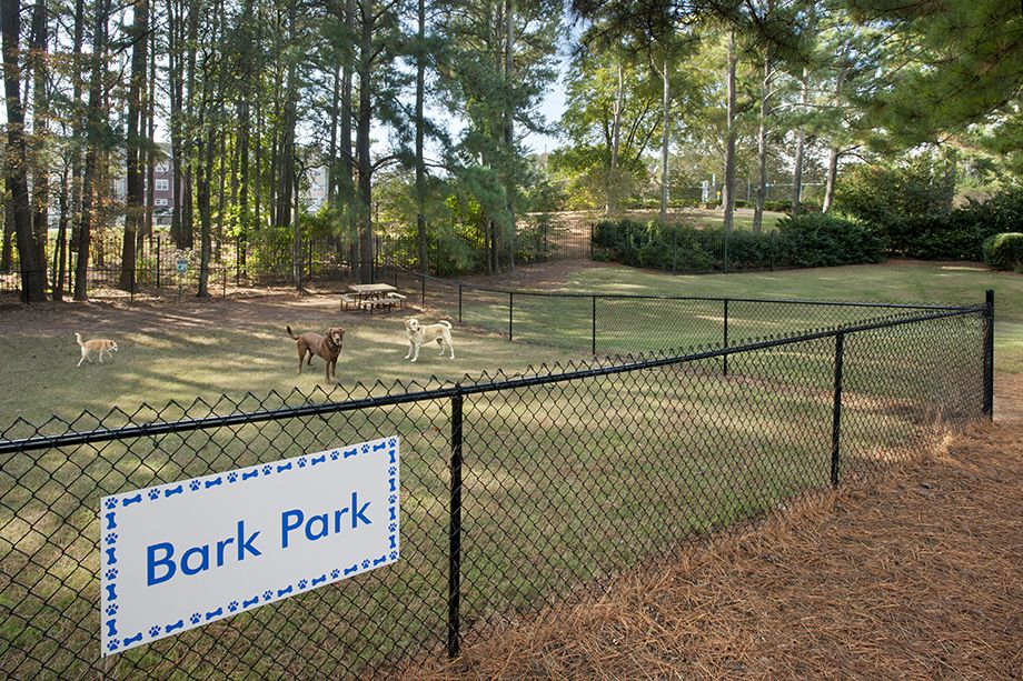 Dog Park at Camden Shiloh Apartments in Kennesaw, GA