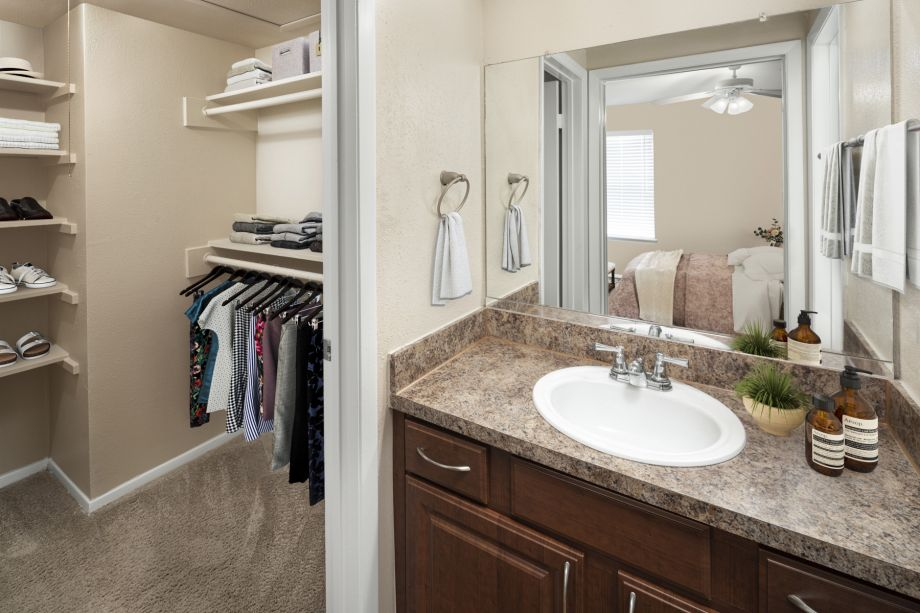 Bathroom and Closet at Camden Valley Park Apartments in Irving, TX